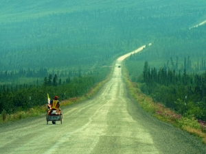 Lonesome soul on the Dalton Highway.